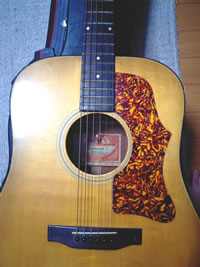Gibson J-50 Delux